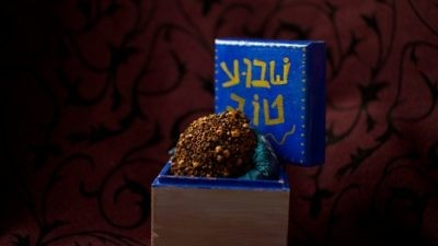 Click photo to download. Caption: Repurposing the etrog as b'samim (spices) for havdalah. Credit: David Komer for Shivimpanim.org