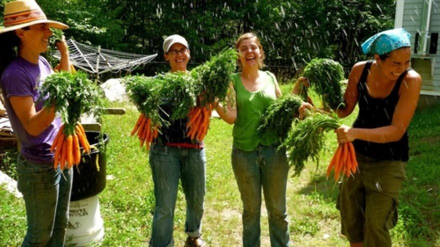 Click photo to download. Caption: Staff and participants of the Adamah Jewish farming program wash the harvest in Falls Village, Conn., in 2010. Credit: Courtesy of Hazon.