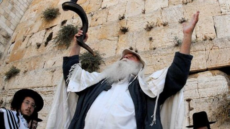The Shofar is customarily blown on Rosh Hashanah. Credit: Wikimedia Commons.