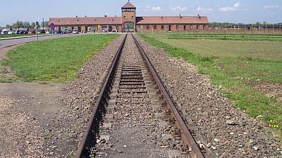The rail leading to the former Auschwitz II (Birkenau) concentration camp in Poland. Credit: Wikimedia Commons.