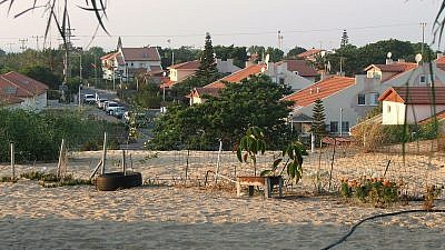 Neve Dekalim was Gush Katif's urban center and home to the largest community. Credit: Yakob Ben-Avraham via Wikimedia Commons.