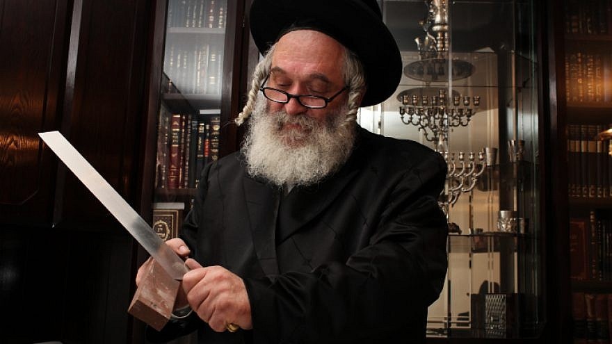 File photo: Rabbi Yitzchak Eliezer Yakav, chief slaughterer from the Chief Rabbinate of Israel, responsible for kosher slaughter of cattle imported to Israel from South America, on June 12, 2011. Photo by Kobi Gideon/Flash90.