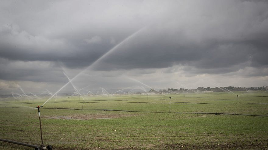 Sprinklers water the plantation fields near the southern Israeli city of Sderot, on Jan. 21, 2017. Photo by Nati Shohat/Flash90.
