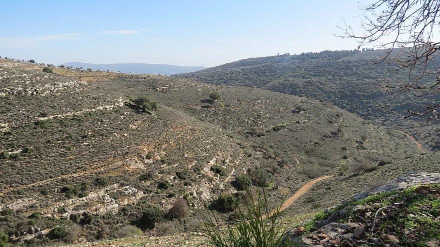 Yodfat (Credit: Rimonah Traub)