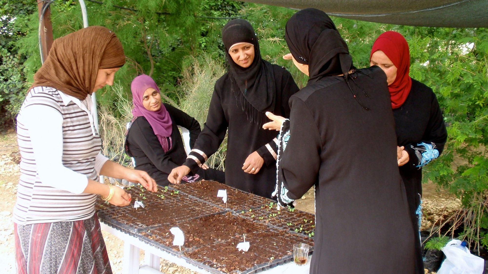 Bedouin women participating in the Wadi Attir program. Credit: Jewish National Fund.
