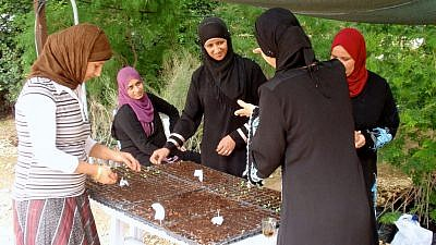 Bedouin women participating in the Wadi Attir program. Credit: Jewish National Fund.