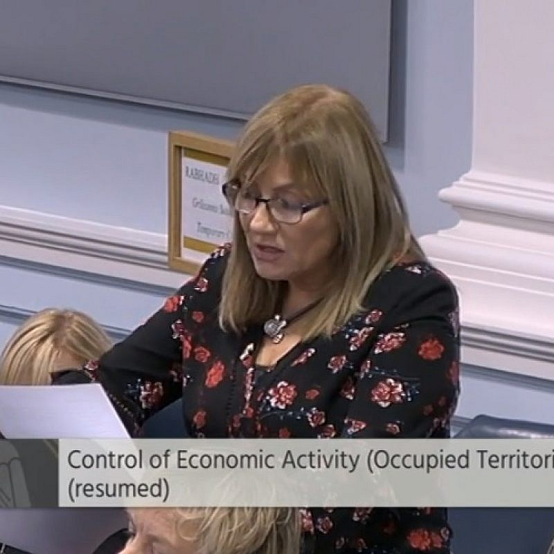 Irish Senator Frances Black speaking in favor of her bill to boycott goods from Israeli settlements. Credit: Screenshot.