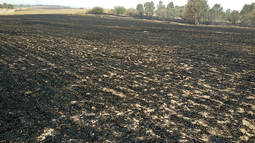Fields of the Eshkol Regional Council in southern Israel scorched by fire caused by incendiary devices sent from Hamas in Gaza, May 6, 2018. Credit: Photo by Nizzan Cohen/Wikimedia Commons.