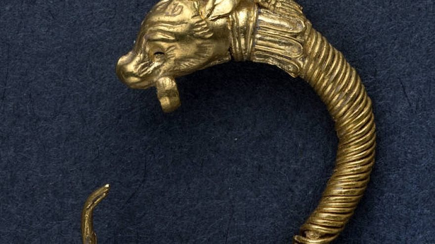 The ancient golden earring found in the City of David's archaeological dig in Jerusalem. Source: Clara Amit, Israel Antiquities Authority.