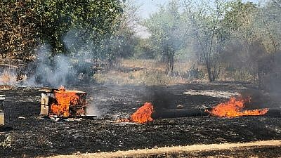 A beehive in flames from an incendiary kite at a honey farm in southern Israel near the Gaza Strip. Credit: Alon Sigron.