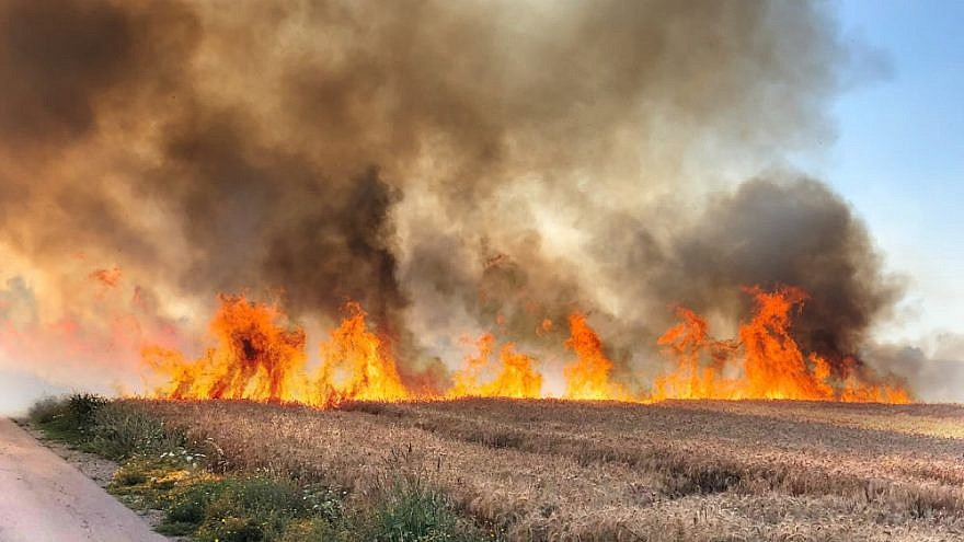 Fires in the Negev Desert in Israel as a result of arson terrorism from Palestinians in Gaza. July 2018. Photo by Tom Oren-Denenberg.