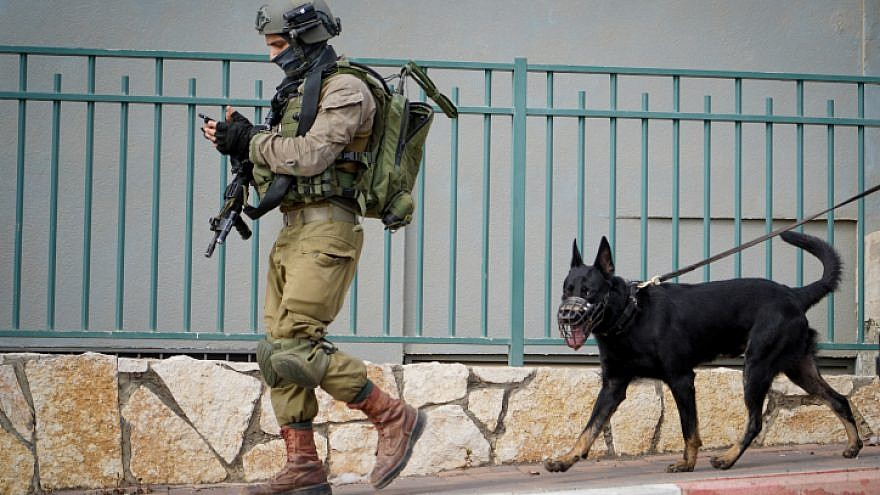 Israeli security forces at the scene of a shooting attack in the Barkan Industrial Park area Oct. 7, 2018. Photo by Flash90.