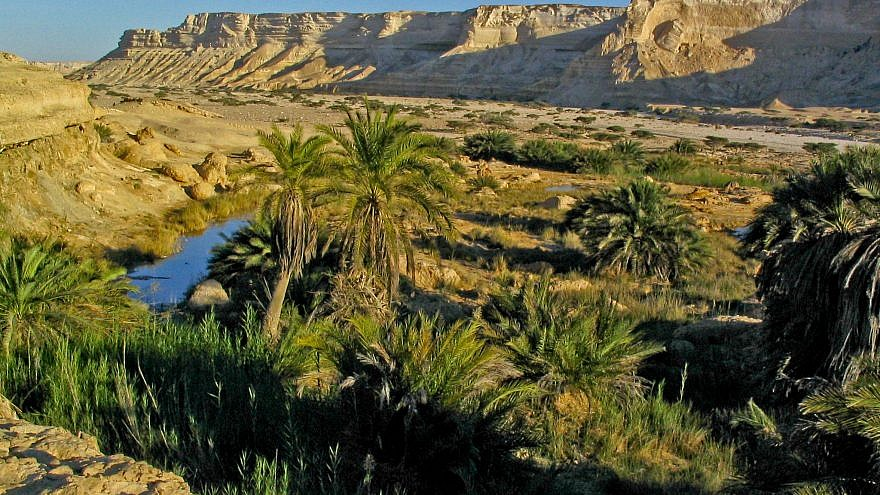 An Omani desert landscape. Credit: Wikimedia Commons via  by Hendrik Dacquin.