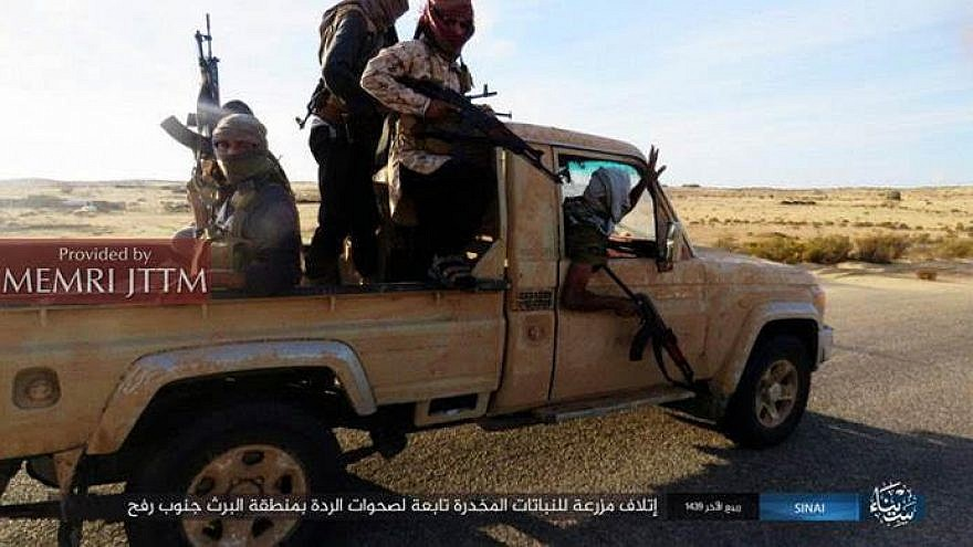 ISIS fighters brandish their weapons while riding a pick up truck south of Rafah. Credit: MEMRI.