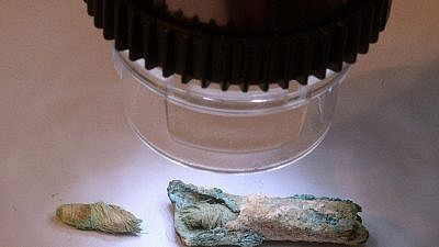 The ancient wick found at the Shivta archaeological dig in the Negev. Courtesy: Israel Antiquities Authority.