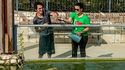 ALEH Negev, which hosts volunteers from around the world, provides manifold services, care and support to people with disabilities and special needs. Credit: JNF.