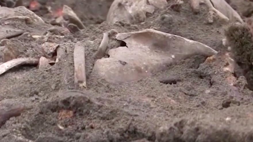 A mass grave of more than 1,000 Jews shot in the head by the Nazis during World War II uncovered in Belarus in 2019. Source: Screenshot.