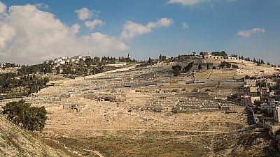 View of Har HaZeitim, Mount of Olives. Credit: International Committee for Har HaZeitim.