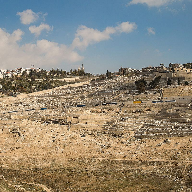 View of Har HaZeitim. Credit: International Committee for Har HaZeitim.