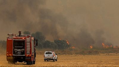 Firefighters try to extinguish a forest fire near Moshav Aderet on July 17, 2019. Photo by Noam Revkin Fenton/Flash90.