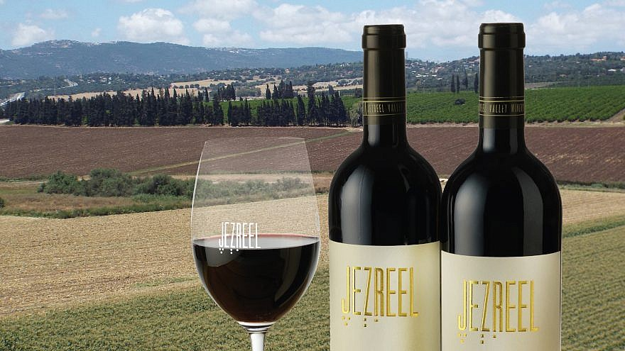 A view of the Jezreel Valley winery in Israel. Credit: Courtesy.