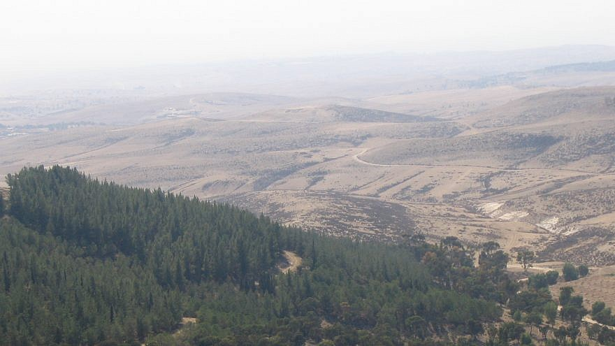 The Yatir Forest, which covers 7,413 acres, is named after the Levite city whose ruins are found within it, and was planted and developed thanks to contributions from friends of KKL-JNF worldwide. Credit: Wikimedia Commons.