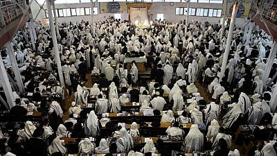 Ultra-Orthodox Jewish men pray in a synagogue in the town of Uman before the start of the Jewish holiday of Rosh Hashanah, Sept. 16, 2012. Photo by Yaakov Naumi/Flash90.