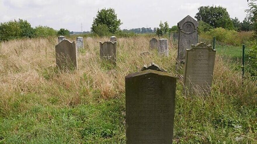 The Jewish cemetery in the Polish town of Zalewo. Credit: Wikimedia Commons.