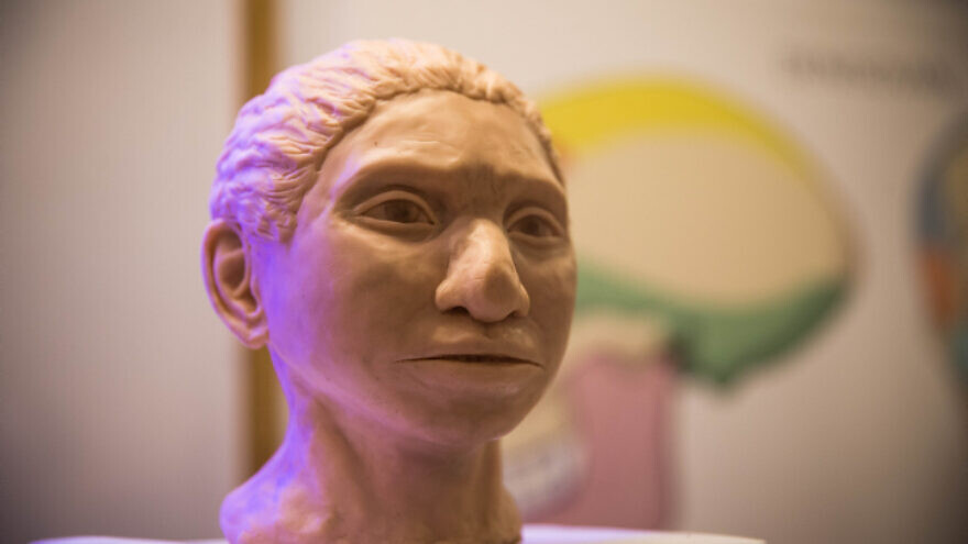A reconstruction of what an ancient Denisovan female head may have looked like according to researchers from the Hebrew University, on display during a press conference at the Hebrew University on Sept. 19, 2019. Photo by Yonatan Sindel/Flash90.