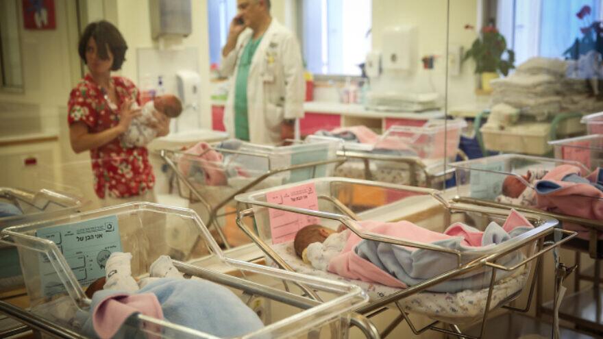 The Premature Baby Ward at Shaarei Tzedek hospital in Jerusalem, on Jan. 5, 2015. Photo by Hadas Parush/Flash90.
