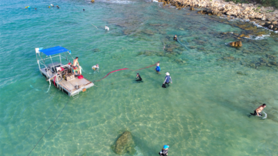 Nearshore excavation with newly developed barge system at biblical port of Tel Dor, Israel, by researchers at the University of Haifa and the University of Californian San Diego's Scripps Center for Marine Archaeology (SCMA). Photo by Anthony Tamberino/SCMA.