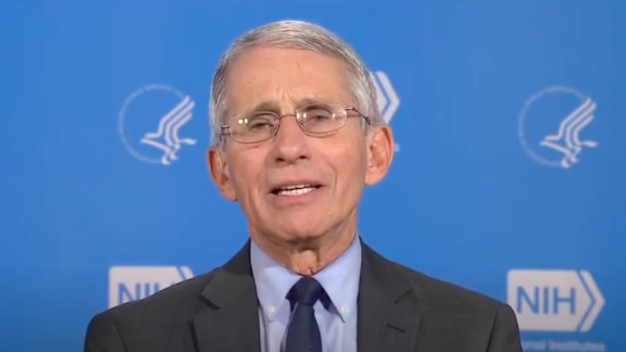 National Institute of Allergy and Infectious Diseases director Dr. Anthony Fauci. Source: Screenshot.