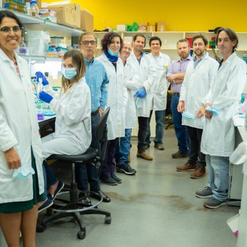 Researchers working on a COVID-19 vaccine at Israeli vaccine development company MigVax. Photo courtesy of OurCrowd.