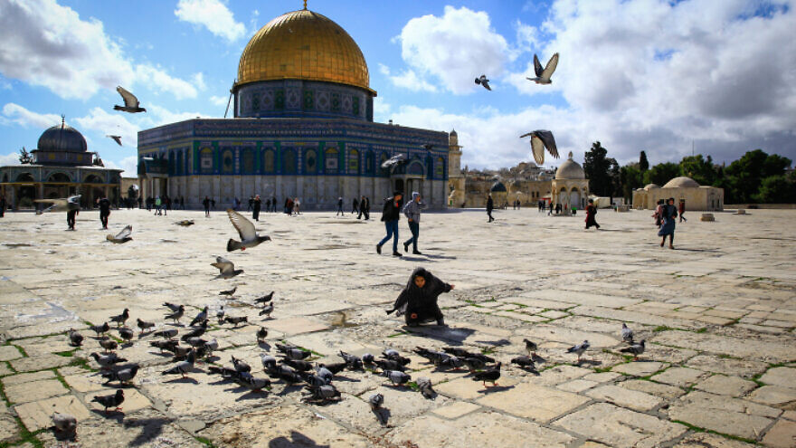 Muslim children play with pigeons at the Dome of the Rock, in Jerusalem's Old City, on Jan. 31, 2020. Photo by Sliman Khader/Flash90.