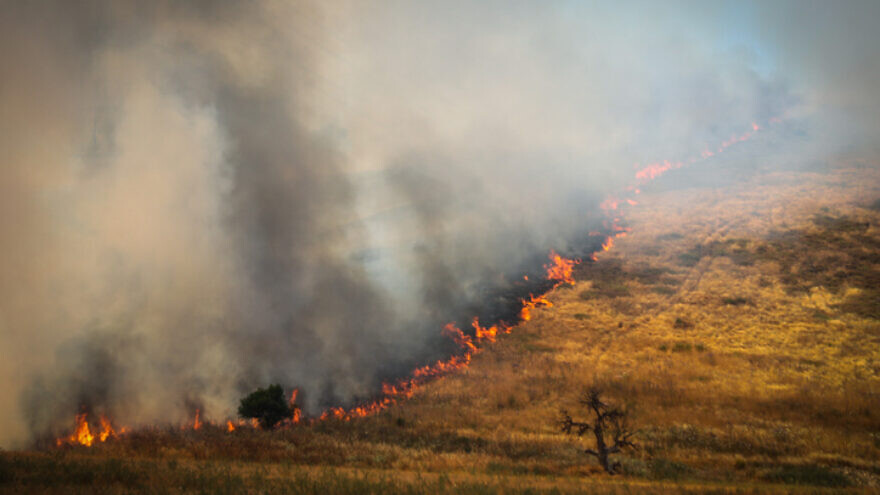 A forest fire near Kiryat Tiv'on in northern Israel, June 1, 2020. Photo by Yossi Zamir/Flash90.