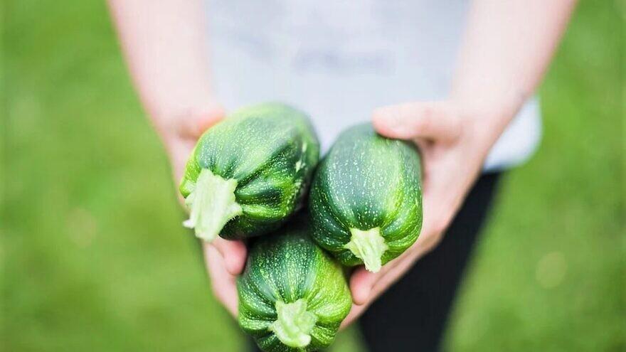 Zucchini at a farmers' market. Credit: Pixabay.