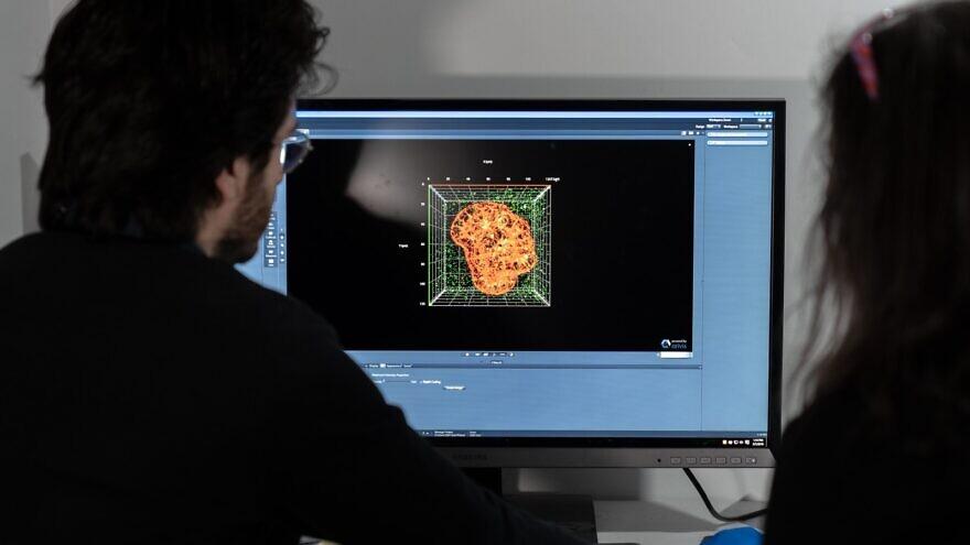 Professor Yaakov Nahmias's lab at Hebrew University in Jerusalem. Photo by Daniel Hanoch.