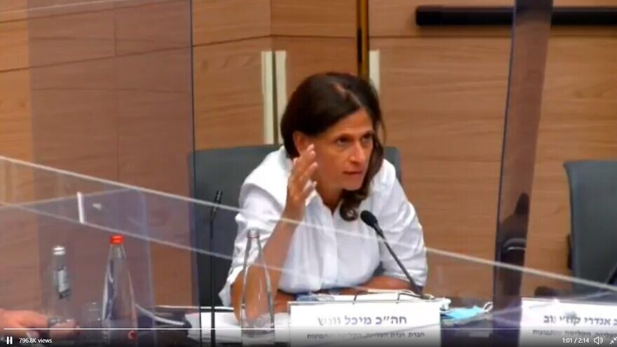Member of Knesset from the Blue and White Party, Michal Cotler-Wunsh speaking at a Knesset hearing on social media. Source: Screenshot.