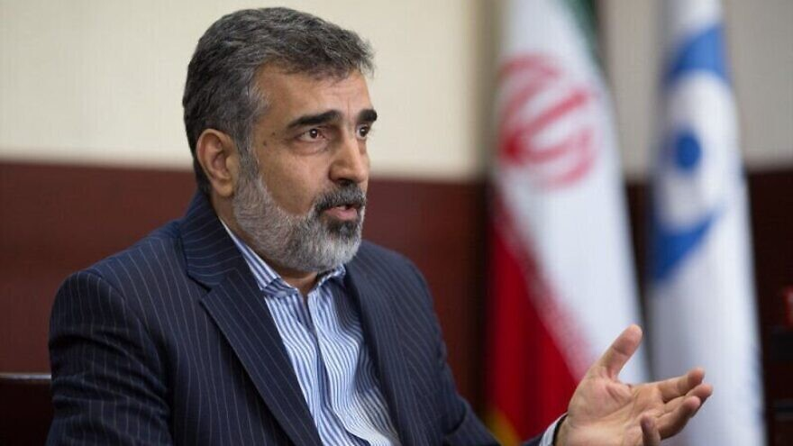 Atomic Energy Organization of Iran spokesman Behrouz Kamalvandi. Credit: Tehran Times.