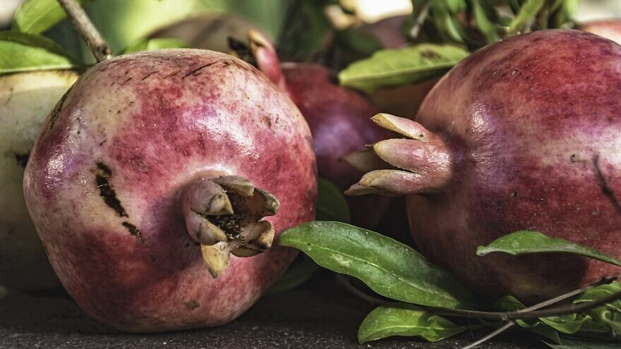 Pomegranate. Credit: Pixabay.