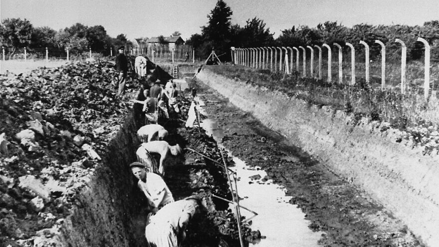 Prisoners in forced labor at Neuengamme concentration camp. Credit: U.S. Holocaust Memorial Museum via Wikimedia Commons.