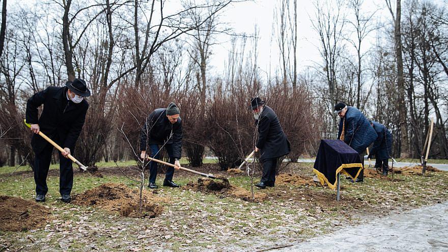 Planting trees at the Babi Yar memorial in Kyiv, Ukraine, for Tu B'Shevat and International Holocaust Remembrance Day, Jan. 27, 2021. Photo by Olga Zakrevskaya.