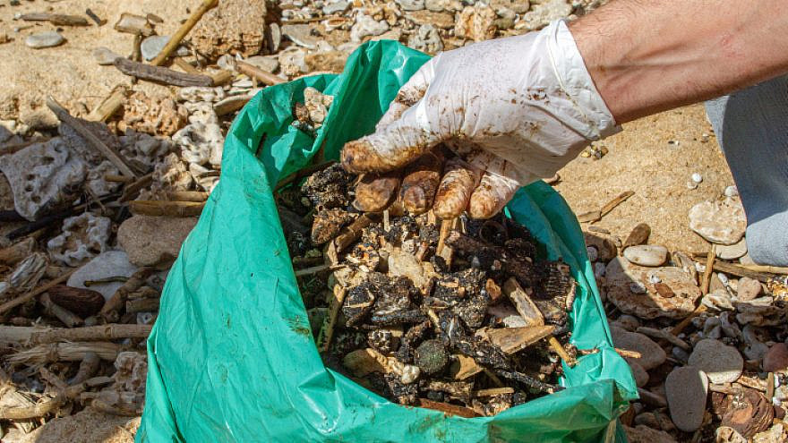 Israeli volunteers clean tar off the Gan Or beach, following an offshore oil spill. Feb. 22, 2021. Photo by Flash90.