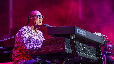 Singer-songwriter Stevie Wonder in 2015. Credit: Kobby Dagan/Shutterstock.