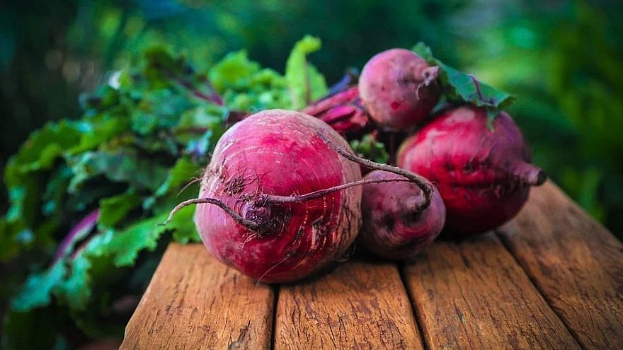 Beets: A Passover staple. Credit: Pixabay.