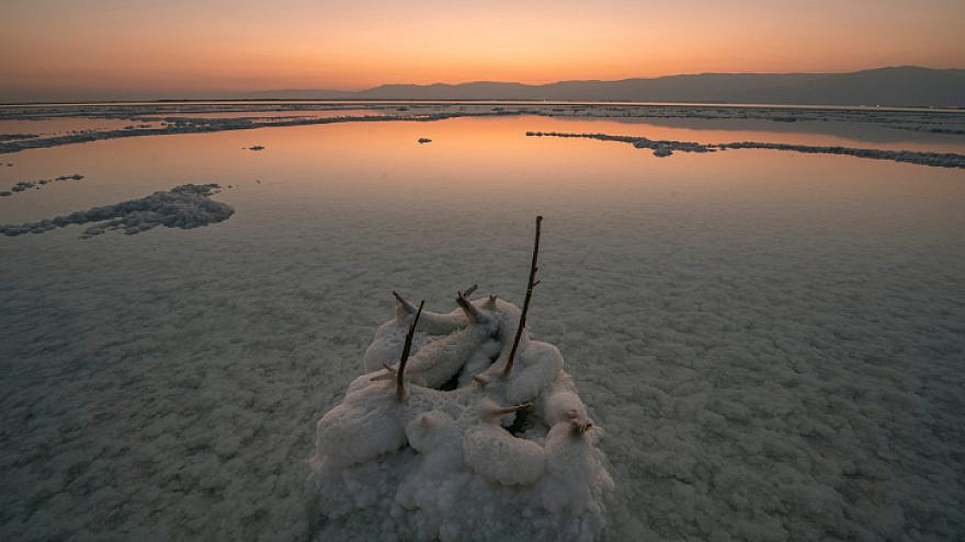 Salt formations on the Dead Sea shore, July 7, 2020. Photo by Mila Aviv/Flash90.