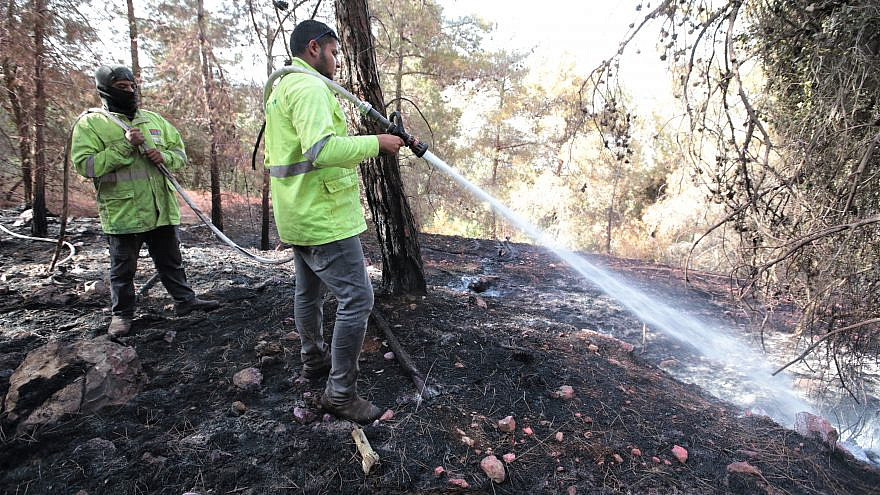 More than 2,650 dunams (about 650 acres) of woodland were destroyed by the fire with 267,000 liters of fire retardant used to put out fires in the Jerusalem area, June 2021. Credit: JNF-USA.