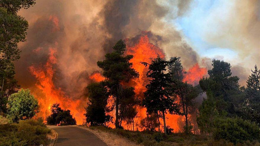Fires outside of Jerusalem, June 9, 2021. Credit: KKL-JNF