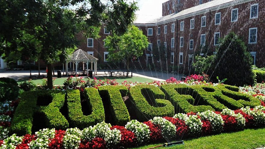 Rutgers University hedge on the College Avenue campus in New Brunswick, N.J. Credit: Tomwsulcer/Wikimedia Commons.