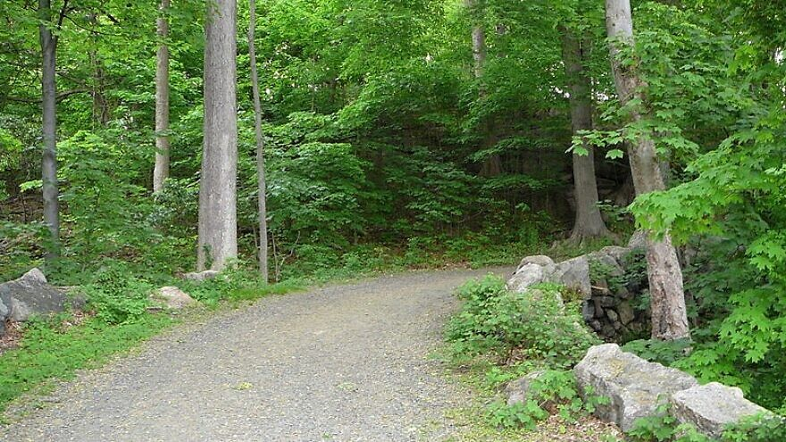 A carriage road in Rockefeller State Park in Pleasantville, N.Y. Credit: Wikimedia Commons.